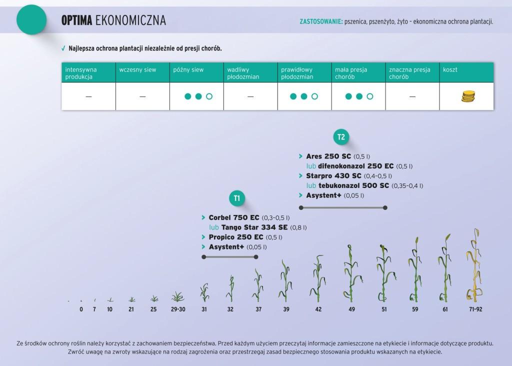 optima_ekonomiczna